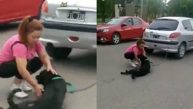 Video: ¡Crueldad! Mujer ata a su perro al auto y lo arrastra.