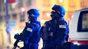 Ataque terrorista en Viena deja tres muertos