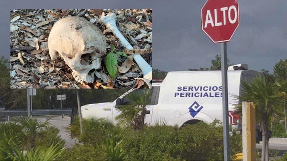 Ubica Guardia Nacional presunta narcofosa en Cancún