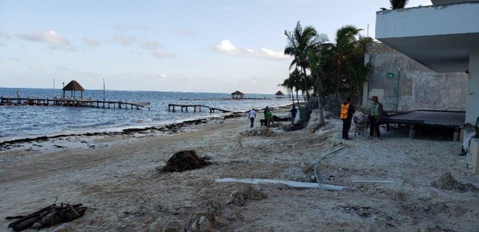 El 85 por ciento de los nidos había cumplido el ciclo de eclosión hasta antes de los tres fenómenos climáticos que impactaron el municipio en octubre, señala la alcaldesa