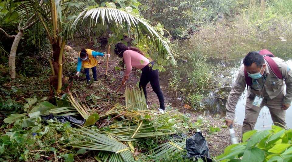 Mantienen erradicado el paludismo en la Zona Maya.