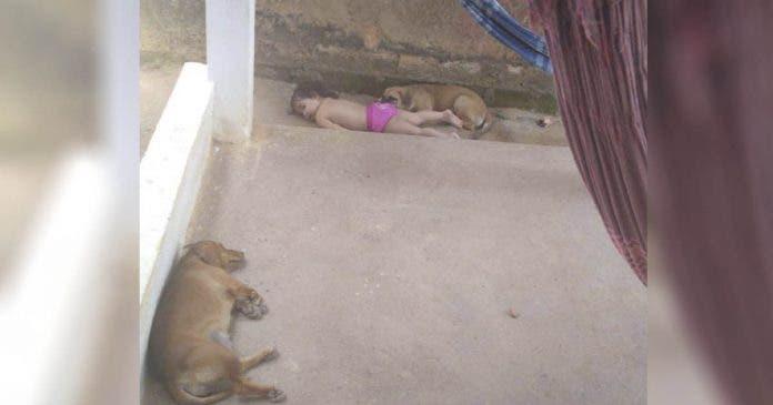 Niña toma siesta con sus perros, la foto se viraliza