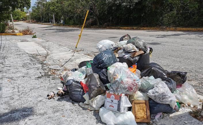 Resurge problema de la recoja de basura en Cancún.