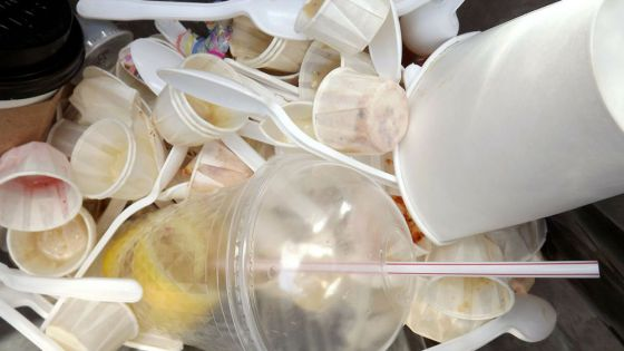 ¡Adiós a los desechables! Queda prohibido el uso de plásticos