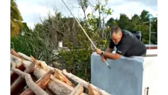 Extranjero intenta incendiar palapa en construcción de su vecina en Sisal