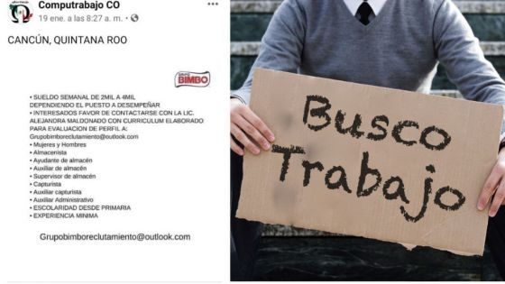 ¿Buscas trabajo?; ¡CUIDADO! puedes caer en manos de estafadores