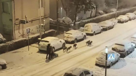 Video: Hombre traslada el Polo Norte a centro de Madrid