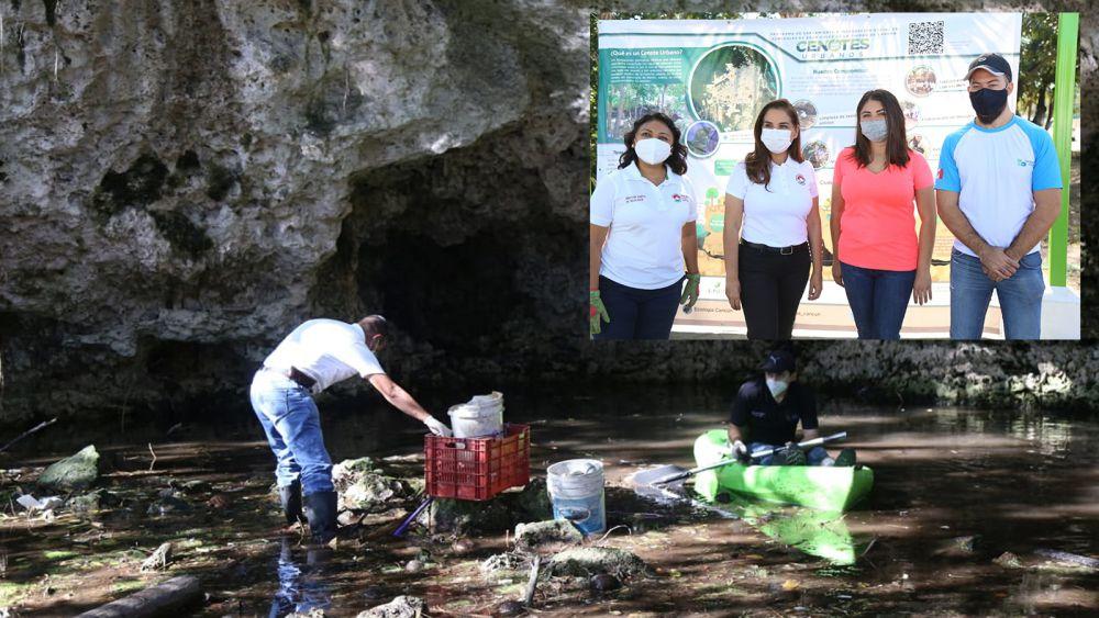 Gobierno de Cancún y sociedad civil rescatan cenotes urbanos