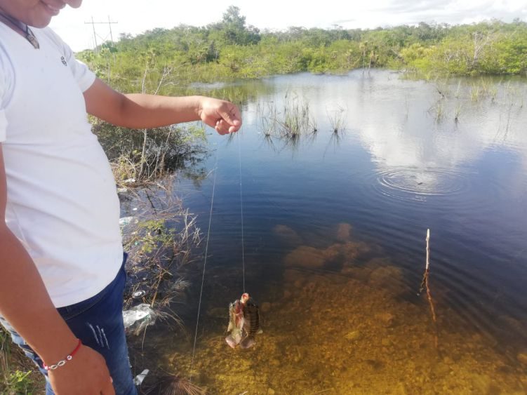 Denuncia comisario foco de infección en La Esperanza; áreas naturales son tiradero de basura de automovilistas que transitan por esa zona de Lázaro Cárdenas.