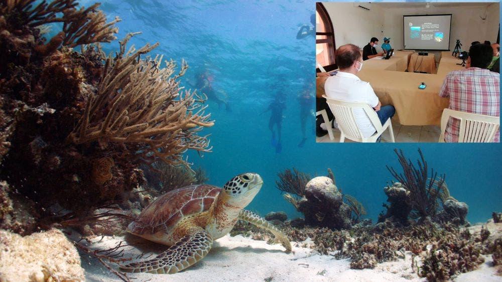 Van CEA y hoteleros de Tulum por rescate de arrecifes en Akumal