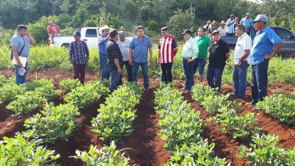 """Anhelan campesinos de Aguada La Presumida """"tecnificarse"""""""