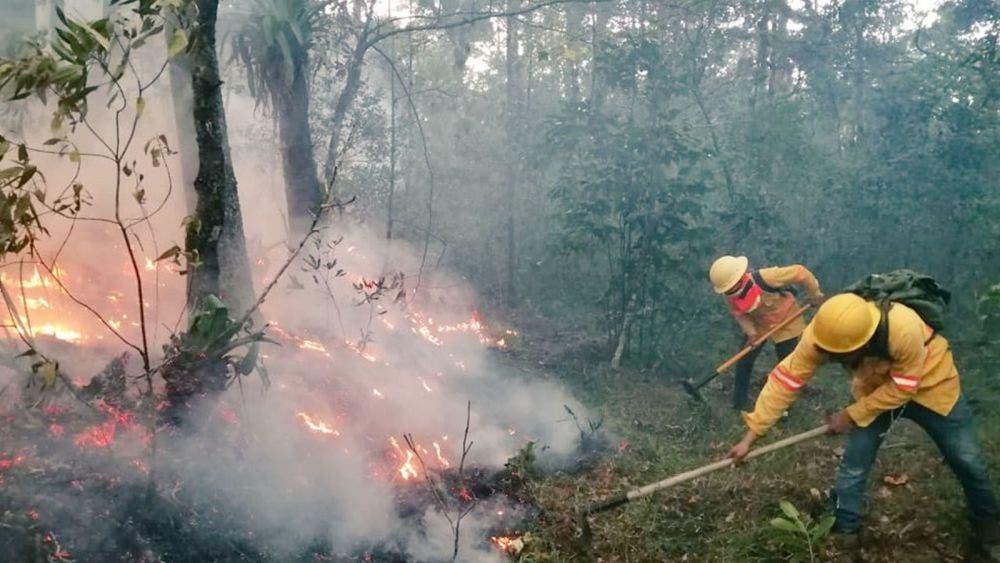 Incendio arrasa con una comunidad en Oaxaca