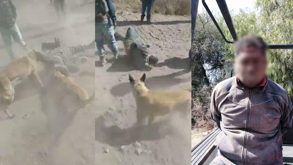 Con perros detienen a supuesto ladrón en Querétaro
