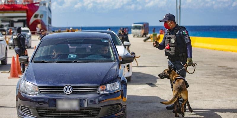 Fortalecen la seguridad en los muelles de Cozumel.