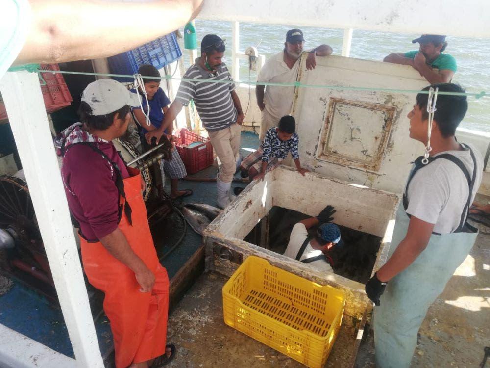 Secretaría del Bienestar apoyará con recursos a pescadores de Holbox.
