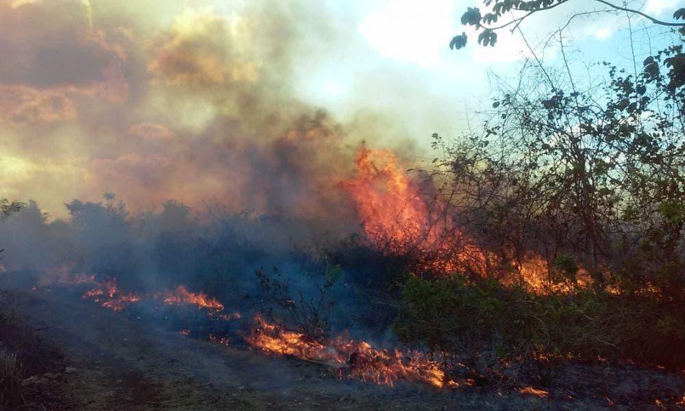 Instalarán en Lázaro Cárdenas comité contra incendios forestales.