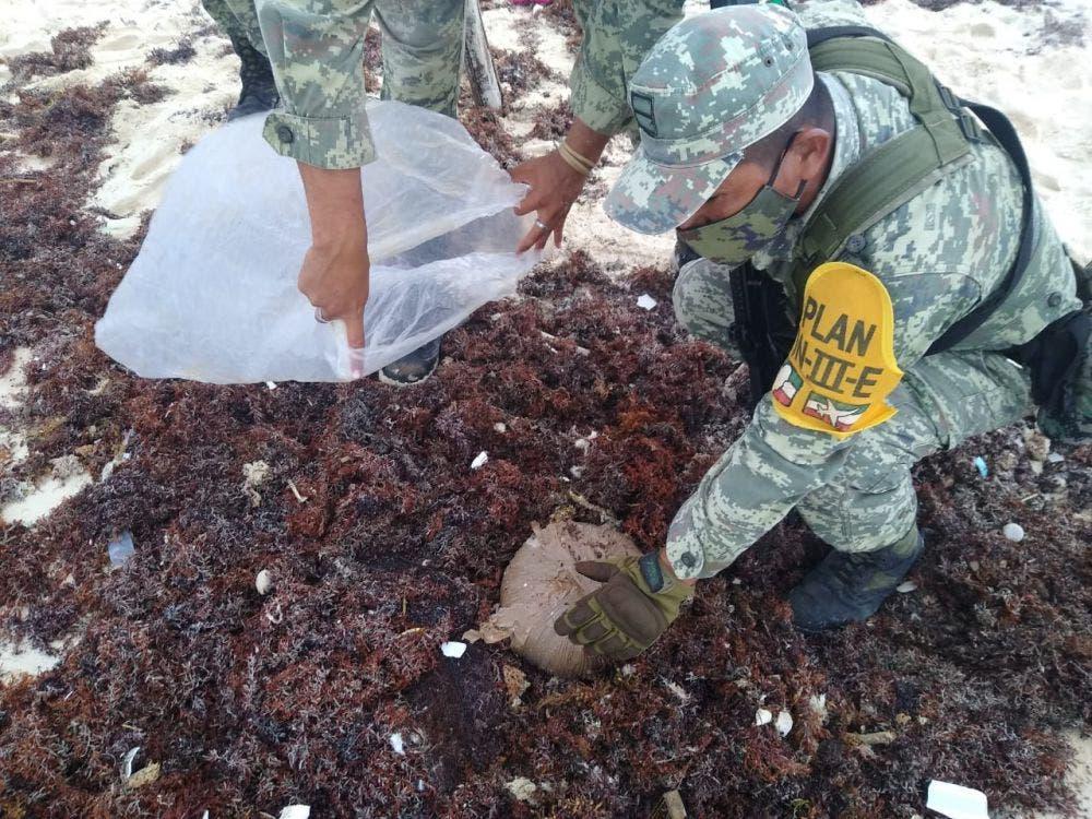 Recala paquete de marihuana en la zona oriental de Cozumel.