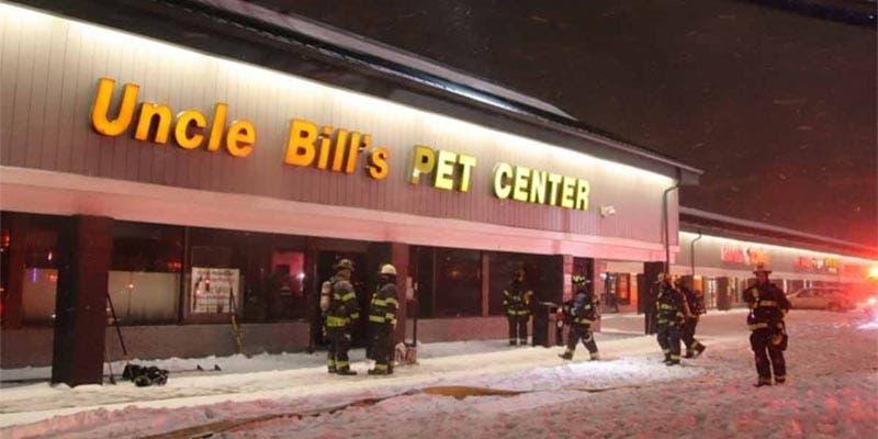 Incendio en tienda de mascotas deja 100 animales muertos