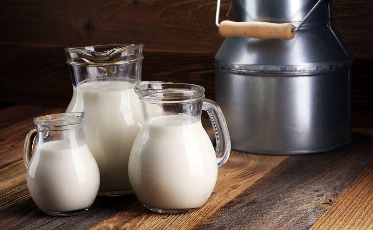 Una investigación de Cinvestav detectó micropláticos en 23 marcas de leche que se comercializadas en el país