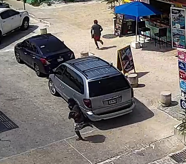 Detienen a presuntos responsables de balacera en Playa de Cancún