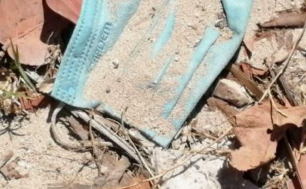 Costas de Telchac Puerto están siendo contaminadas con cubrebocas