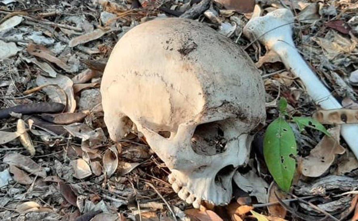 Cancún: Encuentran restos humanos junto a escuela privada
