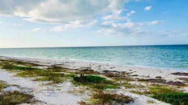 Estas playas no cerrarán durante Semana Santa en Yucatán