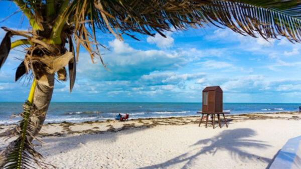 ¿Conoces la playa virgen de Yucatán? Te invitamos a conocerla