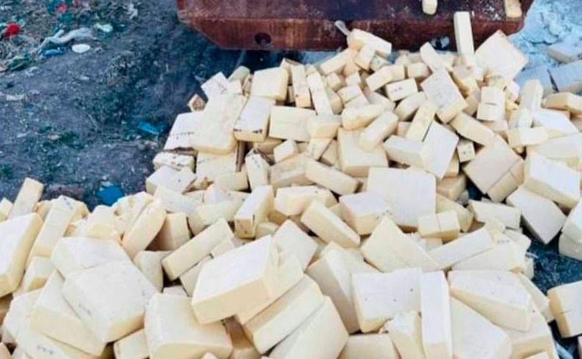 En Chihuahua detectaron 10.6 toneladas de queso menonita contaminado, por lo cual las autoridades procedieron a destruirlo