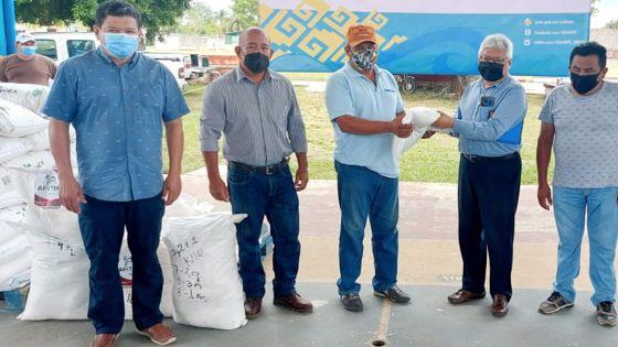 """""""Endulza"""" Sedarpe a apicultores de Bacalar con apoyos"""