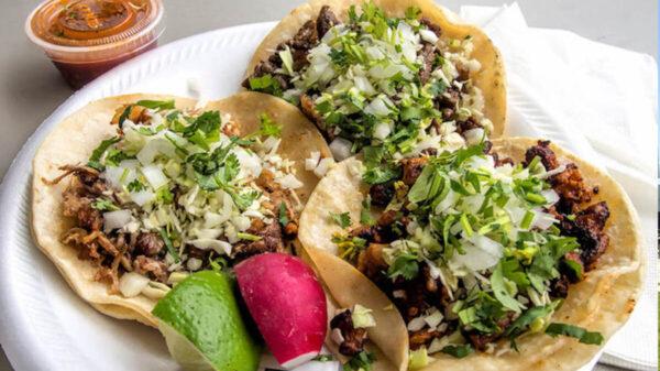 ¿Ya fuiste por tu taco? Hoy se celebra este platillo emblemático de México
