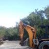 Identifican a quienes talaron manglares en Holbox