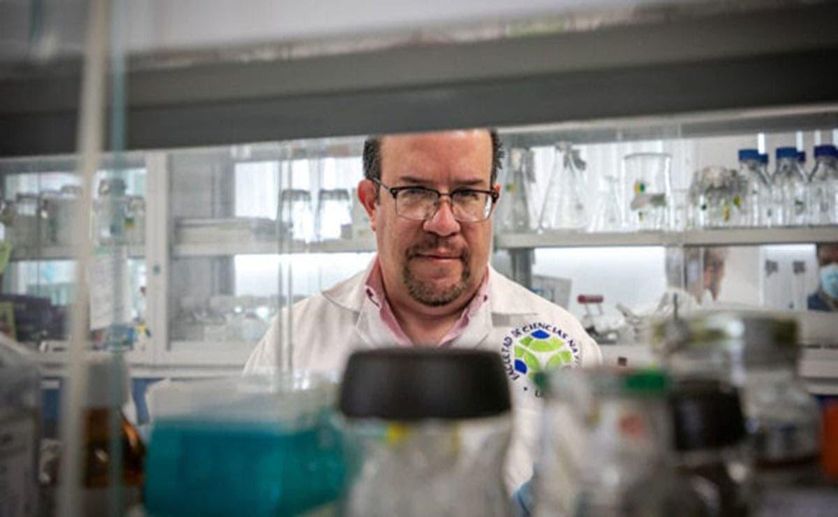 Científicos de Querétaro reportaron los avances de estudios que realizan en animales para desarrollar una vacuna contra el Covid-19