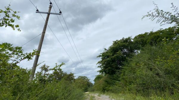 Postes de la CFE a punto de caer en comunidades mayas de Felipe Carrillo Puerto.