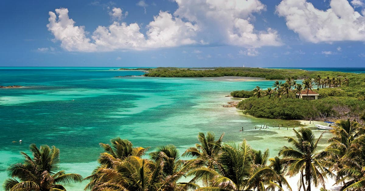 Urge Fuerza por México cuidar las bellezas naturales de Quintana Roo.