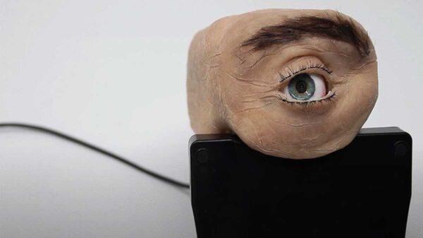 Una cámara web que tiene forma de ojo humano bautizada como la Eyecam fue presentada en el sitio web del investigador francés Marc Teyssier
