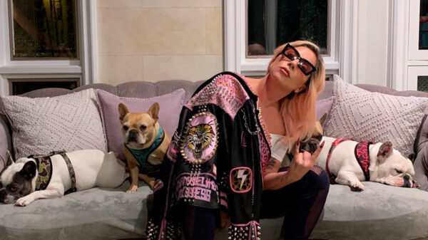 Cinco personas son detenidas por secuestrar a los perros de Lady Gaga