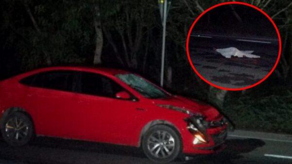 Ciclista muere al ser atropellado tres veces en la carretera Mérida-Chetumal