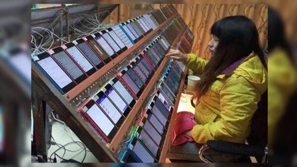 Se ha popularizado la imagen en donde se ve a una mujer reproduciendo decenas de smartphones con la frase las granjas de clics