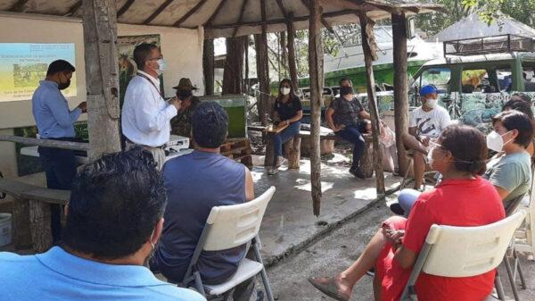 """Conforman comité de vigilancia ambiental """"Guardianes de la Selva"""" en Puerto Morelos"""