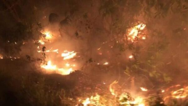 Incendio consume diez hectáreas de monte en Mahahual