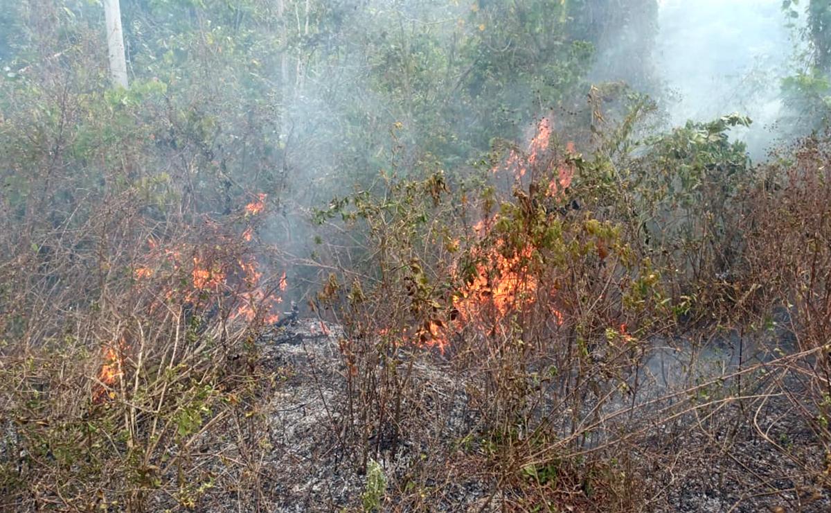 Difundirán a ejidos la NOM-15 sobre quemas agropecuarias