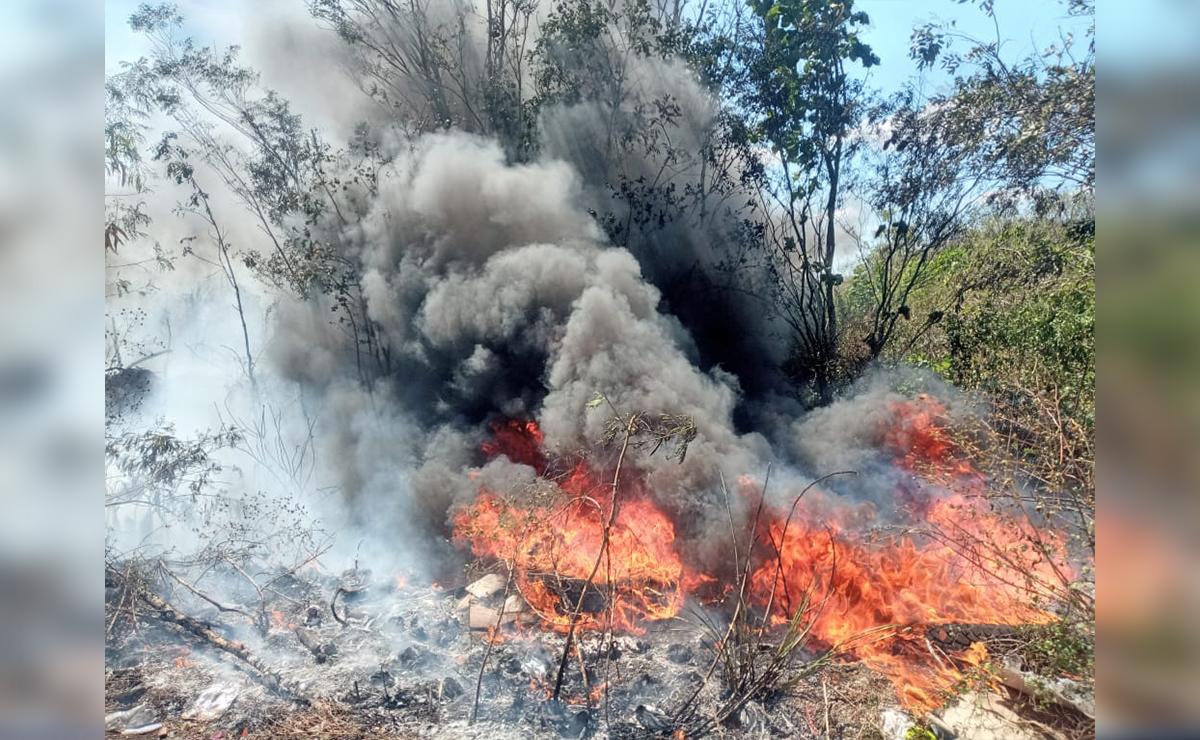 Pululan conatos de incendios forestales en Lázaro Cárdenas
