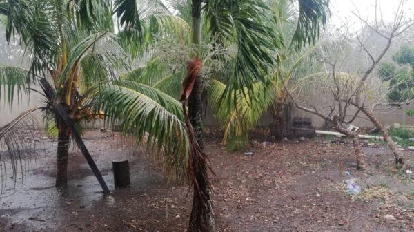 Lluvias dejan sin telefonía celular a Kantunilkín