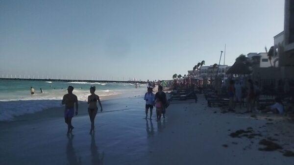 Disminuye el arribo de sargazo a Playa del Carmen.