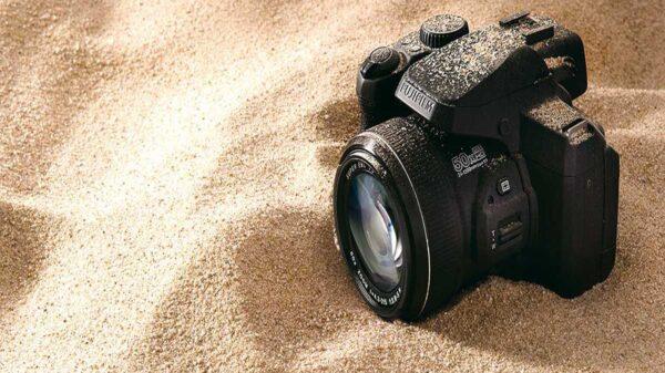 Cuando realizaba un tour de observación de manatíes, un empleado de turismo identificado,, encontró una cámara el fondo de la bahía