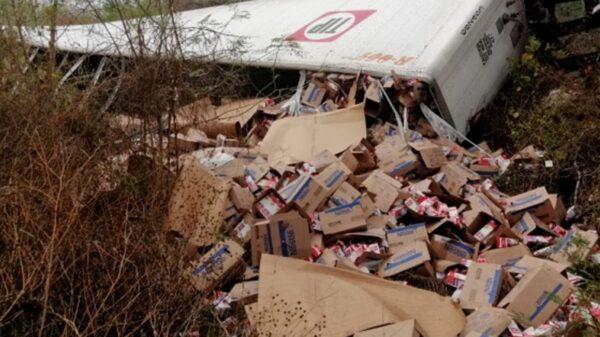 Vuelca tráiler que transportaba cajas de leche en la vía Mérida-Cancún