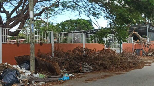 Quintana Roo: 15 de junio arrancaría el proceso de recuperación de escuelas
