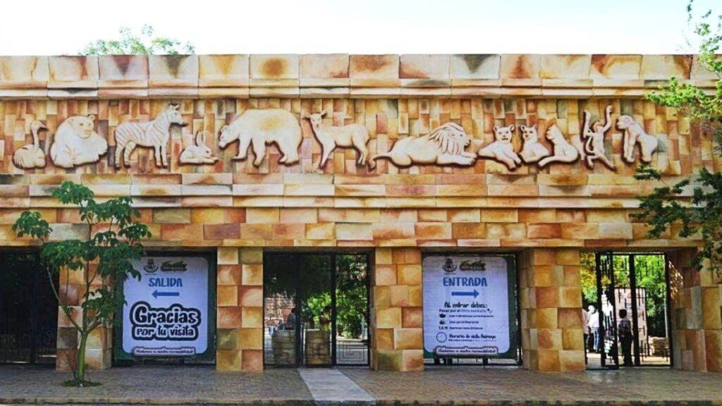 Zoológico Animaya reabrirá sus puertas al público el 19 de Mayo