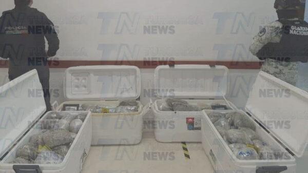 Cozumel: Incautaron 50 kilos de droga en el cateo a casa de El Encanto.